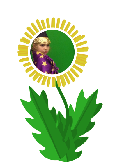 dandilion-wizard